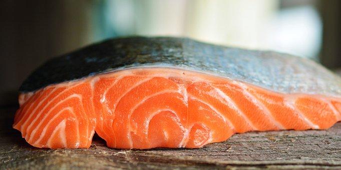 แซลมอน ปลาคุณภาพสูง