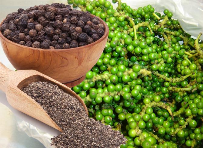 ยาสมุนไพรพริกไทยดำ-บรรเทาอาการผอมแห้งแรงน้อย 2